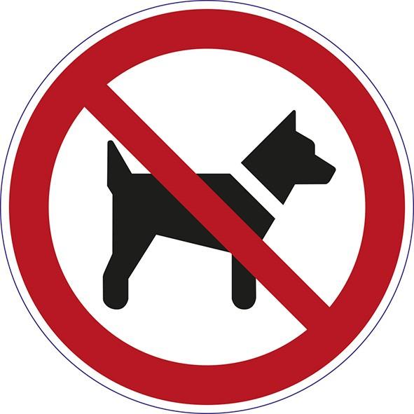 ISO 7010 - P021 - das Mitführen von Hunden ist verboten